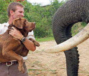 Elephant Whispers (Hazyview)