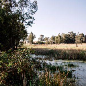 Middelburg Parkrun